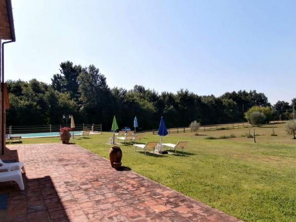 Rustico/Casale in vendita a Altopascio, 450 mq - Foto 6