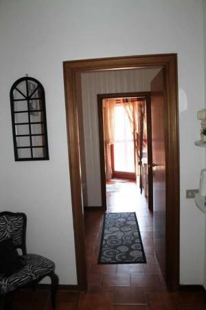 Appartamento in affitto a Roma, Torrevecchia, Arredato, 75 mq - Foto 7