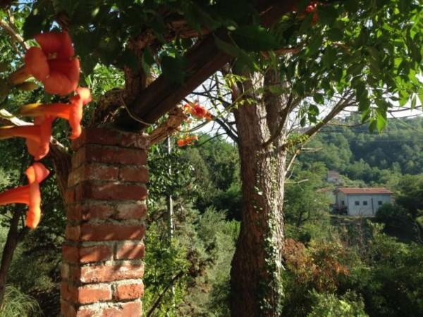Casa indipendente in vendita a Arcola, Trebiano, Arredato, con giardino, 105 mq - Foto 4