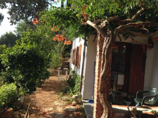 Casa indipendente in vendita a Arcola, Trebiano, Arredato, con giardino, 105 mq - Foto 23