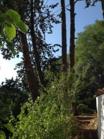 Casa indipendente in vendita a Arcola, Trebiano, Arredato, con giardino, 105 mq - Foto 20