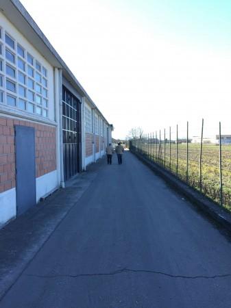 Capannone in affitto a Poirino, Con giardino, 2100 mq - Foto 20
