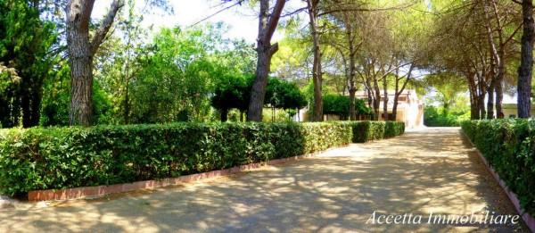 Villa in vendita a Taranto, Residenziale, Con giardino, 700 mq - Foto 18