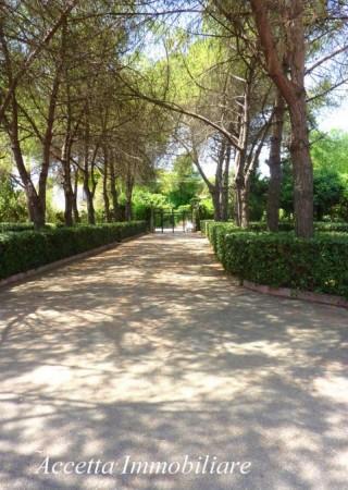 Villa in vendita a Taranto, Residenziale, Con giardino, 700 mq - Foto 17