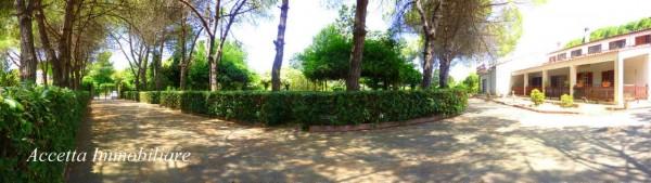 Villa in vendita a Taranto, Residenziale, Con giardino, 700 mq - Foto 2