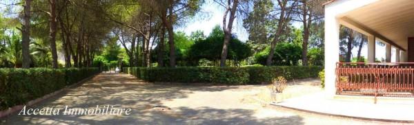 Villa in vendita a Taranto, Residenziale, Con giardino, 700 mq - Foto 16