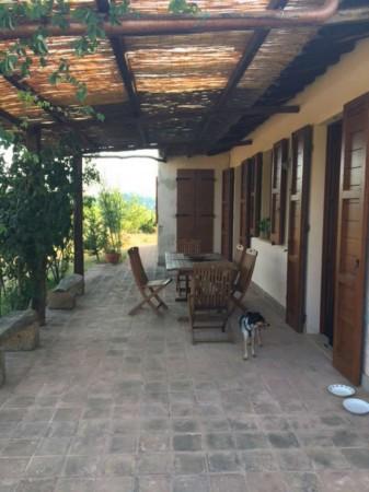 Villa in affitto a Perugia, Santa Croce, Con giardino, 200 mq