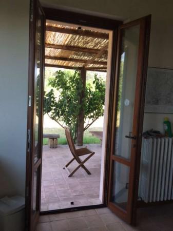 Villa in affitto a Perugia, Santa Croce, Con giardino, 200 mq - Foto 19