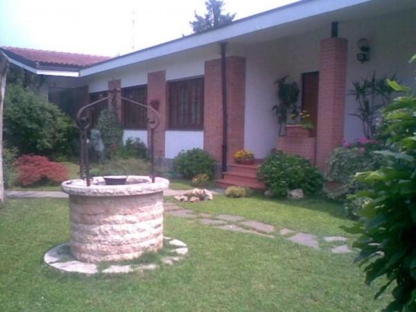 Villa in affitto a Vinovo, Le Torrette, Con giardino, 280 mq - Foto 3