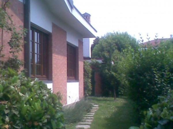 Villa in affitto a Vinovo, Le Torrette, Con giardino, 280 mq - Foto 6