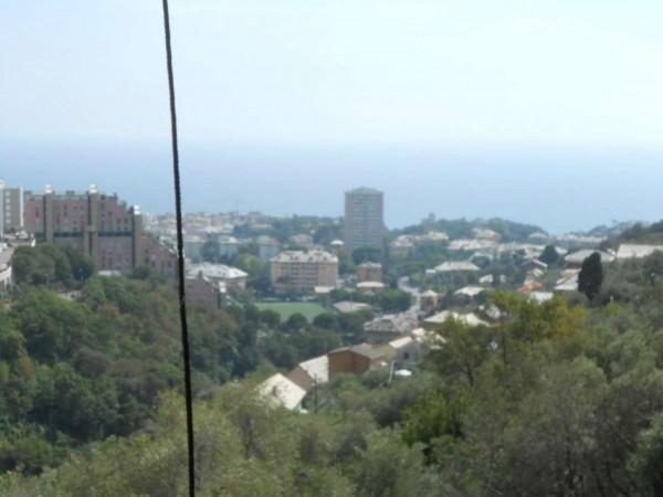 Appartamento in vendita a Genova, Adiacenze Chiapparo, Con giardino, 120 mq - Foto 42