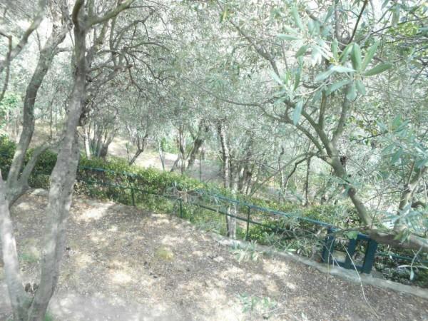 Appartamento in vendita a Genova, Adiacenze Chiapparo, Con giardino, 120 mq - Foto 4