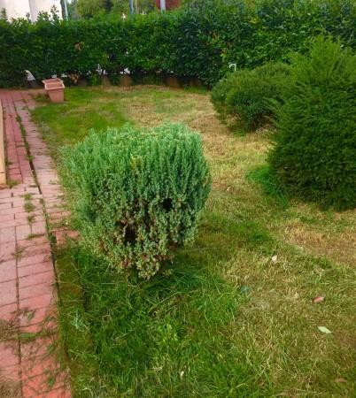 Villetta a schiera in vendita a Martignacco, Con giardino, 100 mq - Foto 5