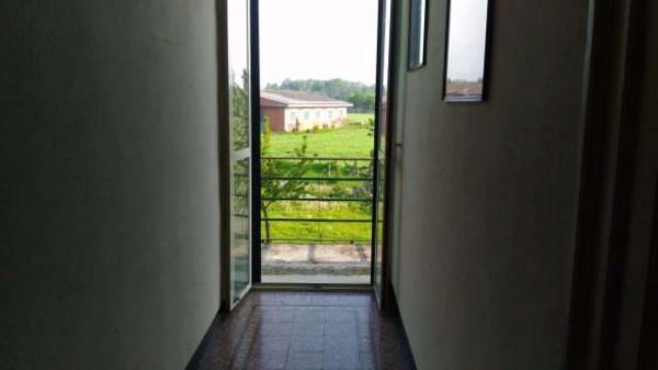 Rustico/Casale in vendita a Alessandria, San Michele, Con giardino, 300 mq - Foto 5