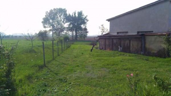 Rustico/Casale in vendita a Alessandria, San Michele, Con giardino, 300 mq - Foto 17