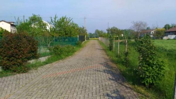 Rustico/Casale in vendita a Alessandria, San Michele, Con giardino, 300 mq - Foto 19