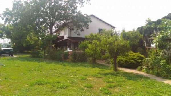 Villa in vendita a Alessandria, Motorizzazione, Con giardino, 300 mq - Foto 11