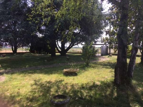Villa in vendita a Alessandria, Litta Parodi, Con giardino, 280 mq - Foto 5
