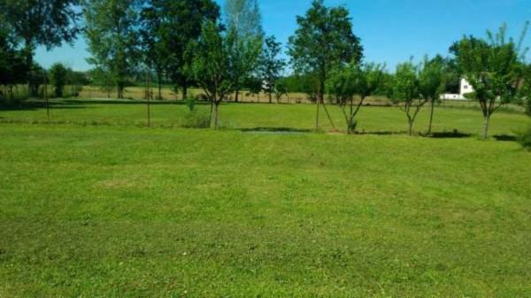Villa in vendita a Alessandria, San Michele, Con giardino, 200 mq - Foto 15
