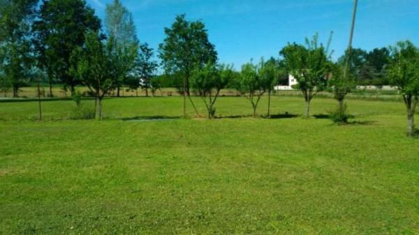 Villa in vendita a Alessandria, San Michele, Con giardino, 200 mq - Foto 14