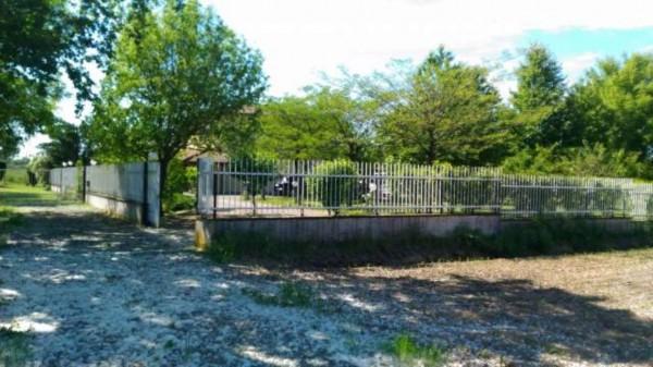 Villa in vendita a Alessandria, San Michele, Con giardino, 200 mq - Foto 18