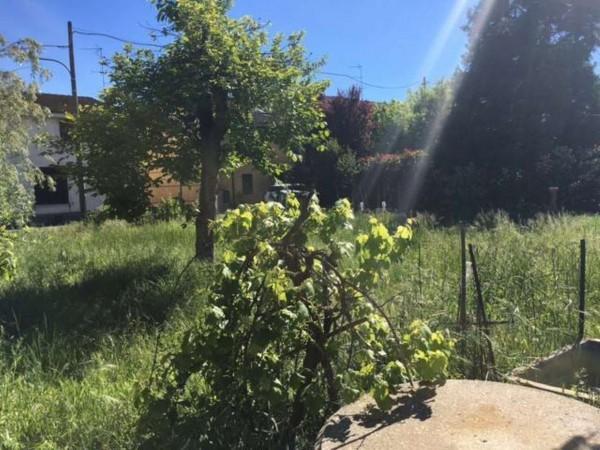Rustico/Casale in vendita a Alessandria, San Giuliano Vecchio, Con giardino, 100 mq - Foto 6