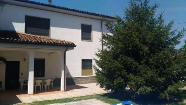 Villa in vendita a Alessandria, Mandrogne, Con giardino, 130 mq - Foto 13