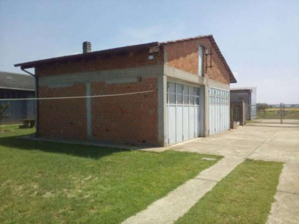 Villa in vendita a Alessandria, San Giuliano Nuovo, Con giardino, 200 mq - Foto 11