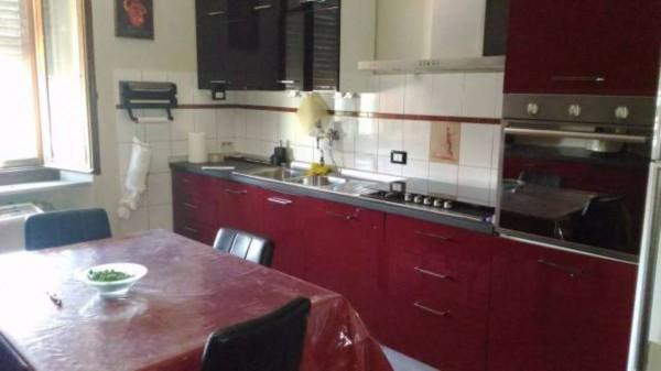 Casa indipendente in vendita a Borgoratto Alessandrino, Con giardino, 300 mq - Foto 4