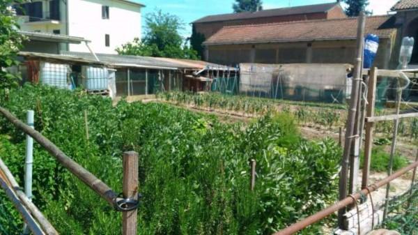 Casa indipendente in vendita a Borgoratto Alessandrino, Con giardino, 300 mq - Foto 9