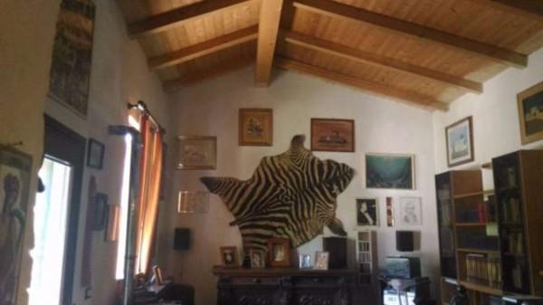 Rustico/Casale in vendita a Alessandria, Pollastra, Con giardino, 160 mq - Foto 2