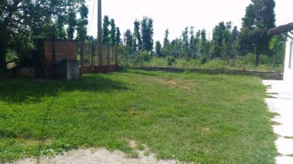 Rustico/Casale in vendita a Casal Cermelli, Con giardino, 140 mq - Foto 7