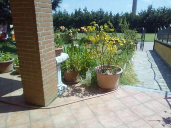Casa indipendente in vendita a Castellazzo Bormida, Con giardino, 220 mq