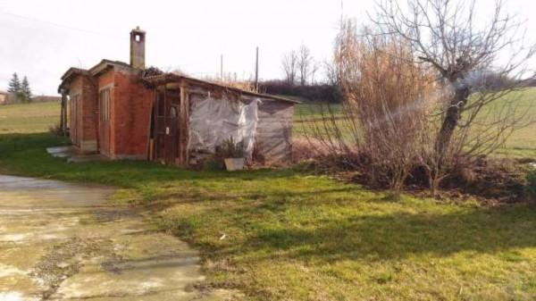 Rustico/Casale in vendita a San Salvatore Monferrato, Con giardino, 700 mq - Foto 12