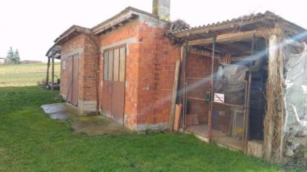 Rustico/Casale in vendita a San Salvatore Monferrato, Con giardino, 700 mq - Foto 11