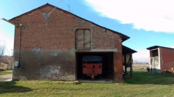 Rustico/Casale in vendita a San Salvatore Monferrato, Con giardino, 700 mq - Foto 9