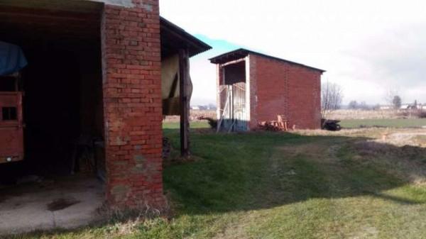 Rustico/Casale in vendita a San Salvatore Monferrato, Con giardino, 700 mq - Foto 10