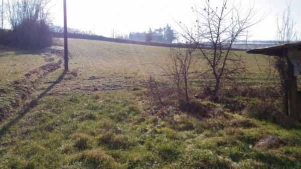Rustico/Casale in vendita a San Salvatore Monferrato, Con giardino, 700 mq - Foto 15