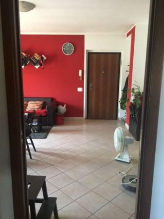 Appartamento in affitto a Marsciano, 70 mq - Foto 14