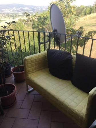 Appartamento in affitto a Marsciano, 70 mq - Foto 12