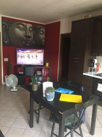 Appartamento in affitto a Marsciano, 70 mq - Foto 18