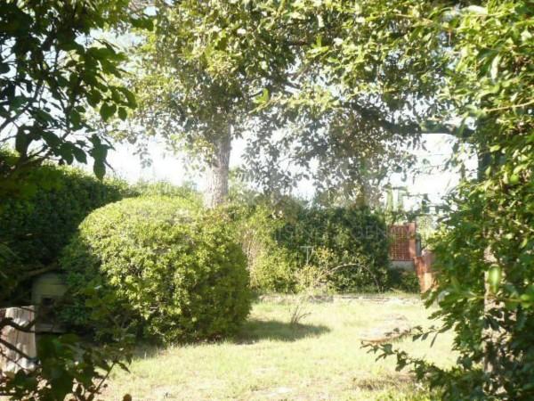 Villa in vendita a Greve in Chianti, San Polo In Chianti, Con giardino, 150 mq - Foto 5