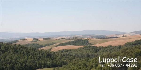 Villa in vendita a Asciano, 350 mq - Foto 8