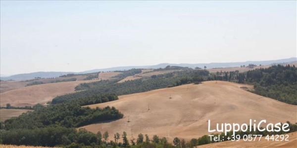 Villa in vendita a Asciano, 350 mq - Foto 10
