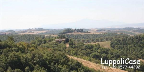 Villa in vendita a Asciano, 350 mq - Foto 12