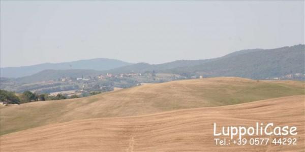 Villa in vendita a Asciano, 350 mq - Foto 17