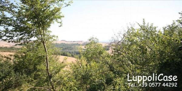 Villa in vendita a Asciano, 350 mq - Foto 22
