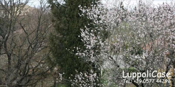 Villa in vendita a Castellina in Chianti, Con giardino, 175 mq - Foto 7