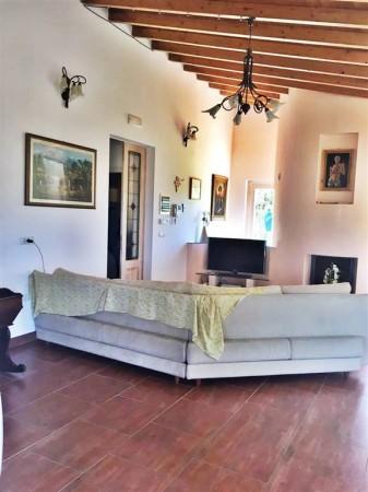 Villa in affitto a Città di Castello, Limitrofo Centro Storico, Con giardino, 120 mq - Foto 15