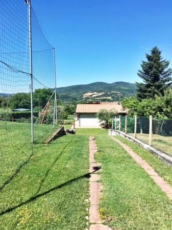 Villa in affitto a Città di Castello, Limitrofo Centro Storico, Con giardino, 120 mq - Foto 20
